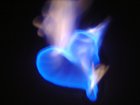 fires-of-love-2-1200280