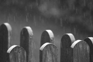 fence-rain-gerlan-20140823-01