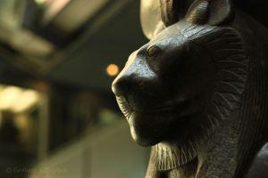 world-museum-liverpool-20150523-08-sekhmet